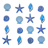 Blue Sea Shells — Stock Photo