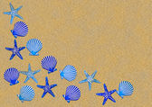 Blue sea shell border — Stock Photo
