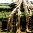 Ta Prohm temple — Stock Photo #2250080