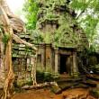 Angkor wat — Stok fotoğraf