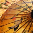 Detail of sunshade — 图库照片 #2307342