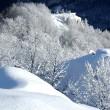 White winter landscape — Stock Photo