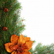 Christmas decoration — Stock Photo #2369472