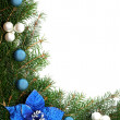 Christmas decoration — Stock Photo #2369667