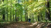 Pareja caminando en la naturaleza — Foto de Stock