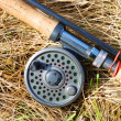 Foto Stock: Fly fishing rod