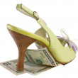 Royalty-Free Stock Photo: Dollars under heel
