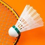 Badminton shuttlecock — Stock Photo #2227449