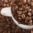 Coffee beans with white cup — Foto Stock