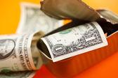Dollar i sardiner kan — Stockfoto