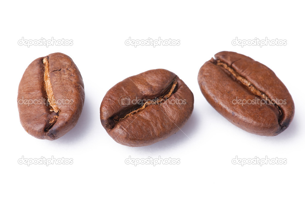 Photo shot of coffee beans on white background — Stock Photo #2263398