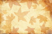 Vintage background with leaves — Stock Photo