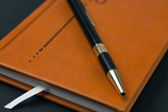 Brown diary and pen — Stock Photo