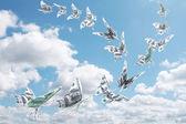Money fly — Stock Photo