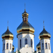 Stock Photo: Domes of church