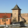 Old castle in town Lutsk in winter — Stock Photo