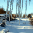 Blizzard of 2010 - icicles — Stock Photo