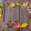 Fall leaves frame on deck — Stock Photo