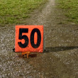 Football - 50 yard line - Stock Photo