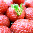 Strawberries closeup — Stock Photo
