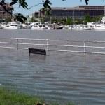 Flood water 2 — Stock Photo