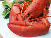 Lobster meal 6 — Stockfoto