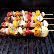 Shish kebabs on the grill — Stock Photo #2386046