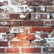 18th Century brickwall — Stock Photo