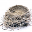 Stock Photo: Bird nest 2