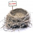 Bird nest - real estate '08 - 图库照片