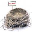 Bird nest - real estate '08 — 图库照片