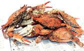 Krabba - kokta blå krabbor — Stockfoto