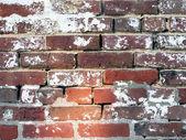 18th Century brickwall — Stock Photo