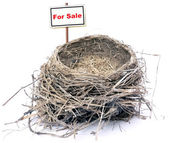 Bird nest - real estate '08 — Stock Photo