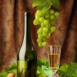 White wine still life — Foto de Stock