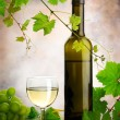 Stock Photo: White wine composition