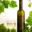 White wine still life — 图库照片