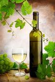 White wine composition — Stock Photo