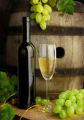 White wine, grapes and cask — Stock Photo