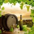 Wine, grapes, grapevine and vineyard - Stock Photo