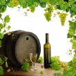 Stockfoto: Wine, grapes and grapevine composition