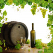 Wine, grapes and grapevine composition - Stock Photo