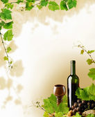 Red wine and grapevine design — Stock Photo