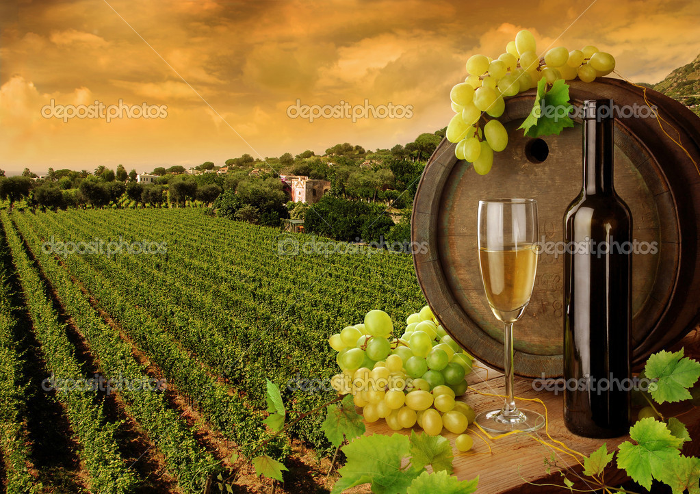 Wine barrel, bottle and glass with fresh grapes, on background of sunset vineyard — Stok fotoğraf #2284112