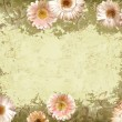 Stock Photo: Grunge floral frame