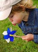 Boy blowing to pinwheel — Стоковое фото