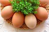 Eggs and cress — Stock Photo