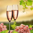 Pink champagne and grapevine — Stock Photo #2481672