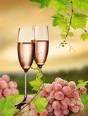 Pink champagne and grapevine — Stock Photo