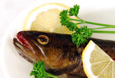 Head of raw trout — Stock Photo